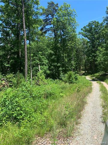 2 OFF CR 529, Fredericktown, MO 63645 - Photo 2