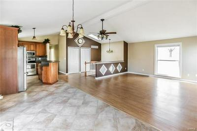 315 ROCK HILL LN, SAINT CLAIR, MO 63077 - Photo 2