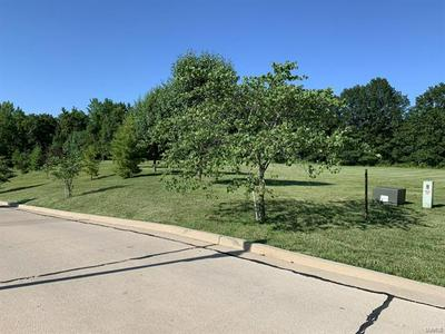 0 CANADIAN DRIVE, Staunton, IL 62088 - Photo 2
