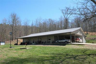 6889 WAYNE ROUTE V, Piedmont, MO 63957 - Photo 1