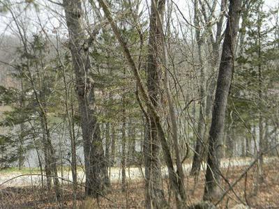 0 CYPRESS LEAF, NEW HAVEN, MO 63068 - Photo 2