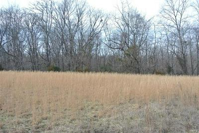 0 LOT 3 TYLER BRANCH ROAD, Perryville, MO 63775 - Photo 2
