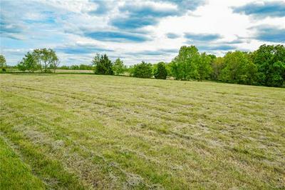 240 ROCKING HORSE LN, Elsberry, MO 63343 - Photo 2