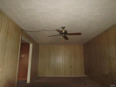 515 COLE ST, SIKESTON, MO 63801 - Photo 2