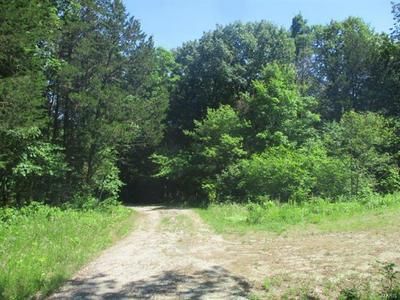 15 JENTZCH LANE, Augusta, MO 63332 - Photo 2