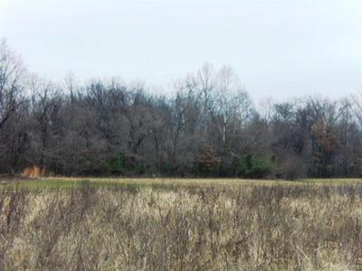 11681 STRAWBERRY RD, Carbondale, IL 62901 - Photo 2