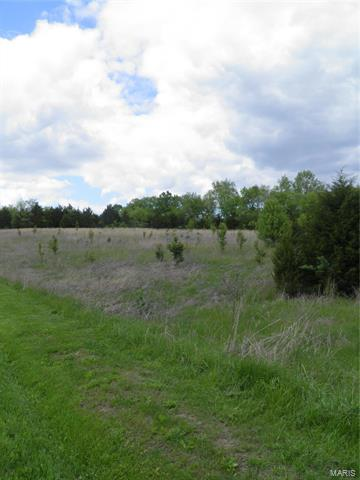 0 LOT 8 OF DRY FORK MEADOWS, Imperial, MO 63052 - Photo 1
