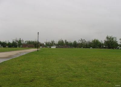 0 POWELL BLVD (LOT 35), Malden, MO 63863 - Photo 1