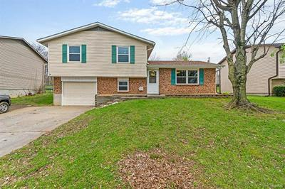 228 S SHAWNEE BLVD, JACKSON, MO 63755 - Photo 2