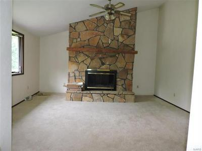 805 CHARLES CT, Steeleville, IL 62288 - Photo 2