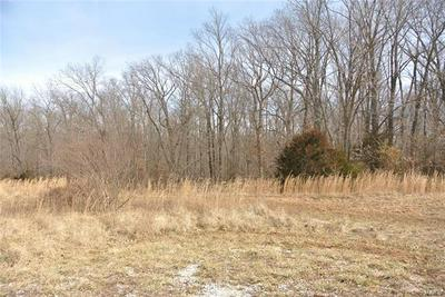 0 LOT 34 WOODS VIEW LANE, Perryville, MO 63775 - Photo 1