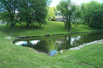 869 HOLIDAY POINT PKWY, Edwardsville, IL 62025 - Photo 1