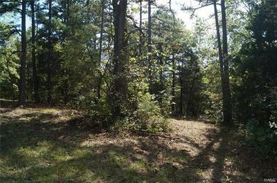 0 SOARING HAWK, Lonedell, MO 63060 - Photo 2