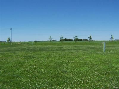 343 ROSEWOOD LN, Aviston, IL 62216 - Photo 1