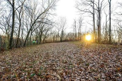 0 PAGE BRANCH HOLLOW DRIVE, Elsberry, MO 63343 - Photo 1