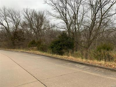 0 DOROTHY, Perryville, MO 63775 - Photo 2