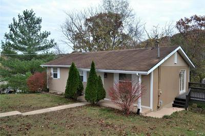 5519 CARTER DR, House Springs, MO 63051 - Photo 1