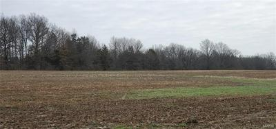 76 HIGHWAY T, FORISTELL, MO 63348 - Photo 2