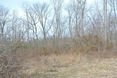 0 LOT 28 TYLER BRANCH ROAD, Perryville, MO 63775 - Photo 2