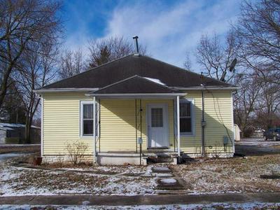 217 S WATER ST, STAUNTON, IL 62088 - Photo 1