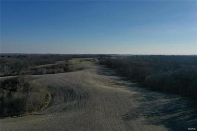 327 HILLY VISTA LN, PERRYVILLE, MO 63775 - Photo 2