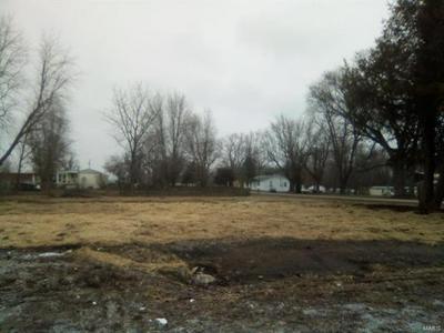 349 MADISON ST, Pocahontas, IL 62275 - Photo 2