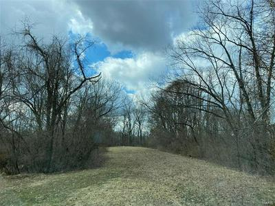 0 GREENWOOD DRIVE, BRIGHTON, IL 62012 - Photo 1