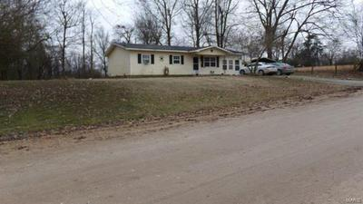 13254 COUNTY ROAD 228, CAMPBELL, MO 63933 - Photo 1
