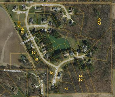 4916 WILDERNESS PT, Smithton, IL 62285 - Photo 2