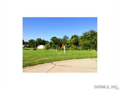CLIFF VIEW PLACE, Valmeyer, IL 62295 - Photo 1