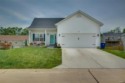117 WATERFALL WAY, Pevely, MO 63070 - Photo 2