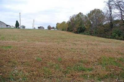 0 LOT 20 HIGHWAY H, St Mary, MO 63673 - Photo 2