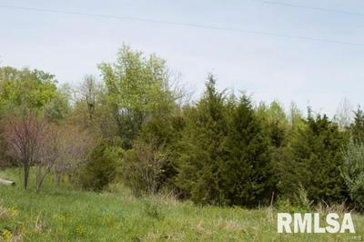 0 SQUIRES, PITTSBURG, IL 62974 - Photo 1