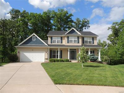 47 DRY BRANCH CT, Wentzville, MO 63385 - Photo 1