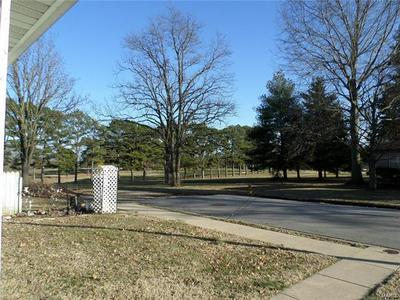 907 E APPLE AVE, OWENSVILLE, MO 65066 - Photo 2
