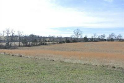 0 LOT 21 OAK FOREST DRIVE, Perryville, MO 63775 - Photo 1