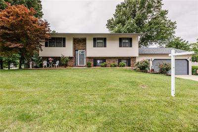 907 LONG BRANCH RD, Troy, IL 62294 - Photo 2
