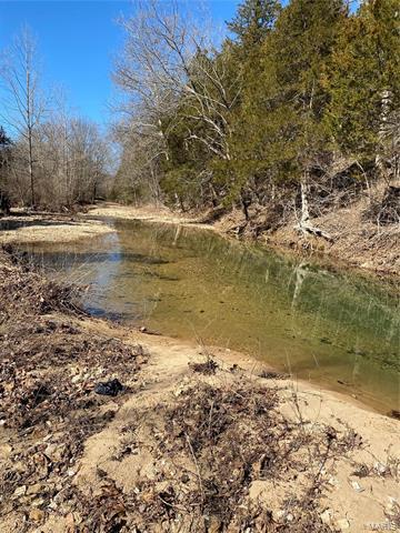 113 ROCKY COMFORT, Steelville, MO 65565 - Photo 1