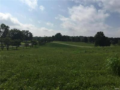 3 DUX LANDING ROAD, Cape Girardeau, MO 63701 - Photo 1