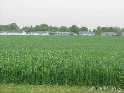 109 VILLAGE VIEW DR, Damiansville, IL 62215 - Photo 2