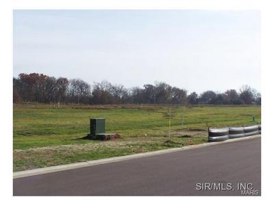 418 WEDGEWOOD LN, Trenton, IL 62293 - Photo 1