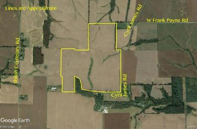 0 000 CYRIL JAMES ROAD, Ewing, IL 62836 - Photo 1