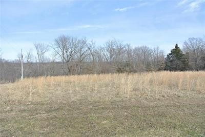 0 LOT 27 TYLER BRANCH ROAD, Perryville, MO 63775 - Photo 1