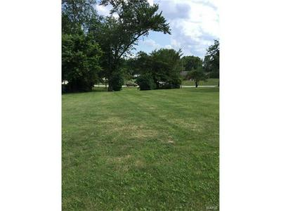 0 W. NORTH LOT 6 STREET, ALHAMBRA, IL 62001 - Photo 1