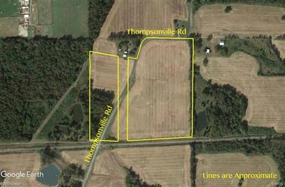 0 0 THOMPSONVILLE RD, Thompsonville, IL 62890 - Photo 2