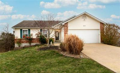 883 RIVERVIEW DR, Pevely, MO 63070 - Photo 1