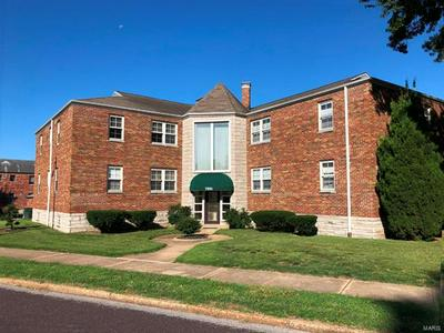 7201 HAMPTON AVE APT 2S, St Louis, MO 63109 - Photo 1