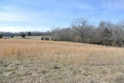 0 LOT 37 WOODS VIEW LANE, Perryville, MO 63775 - Photo 1