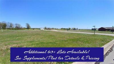 16743 ASHLAND CT, Carlyle, IL 62231 - Photo 1