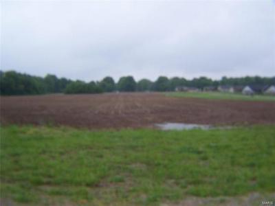 0 WEDGEWOOD LANE, Trenton, IL 62293 - Photo 2